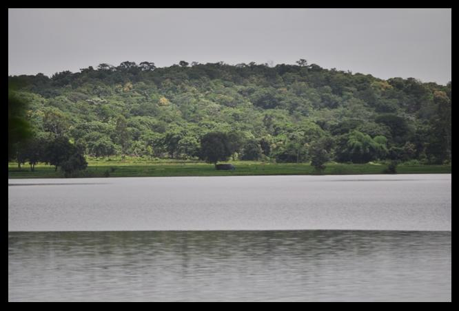 Lake View of Narsapur Forest near Hyderabad