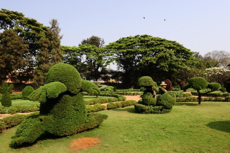 Kondapur Botonical Garden Hyderabad