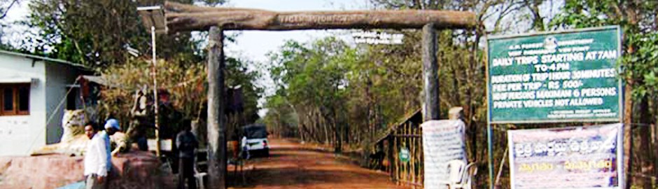 Mannanur Tiger Reserve check post