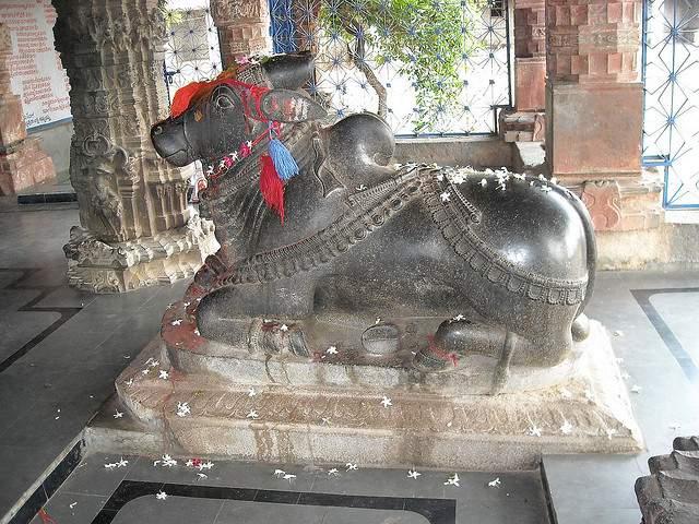 Nandi in Ramalingeswara Temple, Nandikandi