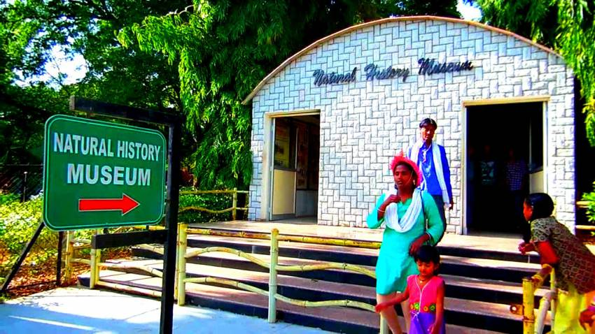 Natural History Museum_Nehru Zoological Park_Hyderabad1